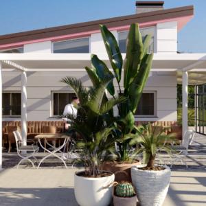 eupili-cafe-progettazione-locali-render-giorno-esterno-piante