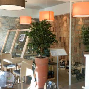 la-cucina-del-chicco-ristorante-legno-lampade-arancioni