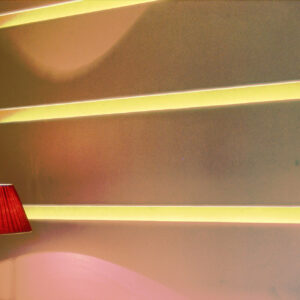 parco-dei-pini-lampada-fascio-di-luce